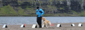 Rally lýdni venjing við Leynavatn