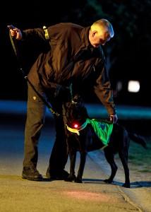 hund-og-ejer--refleks